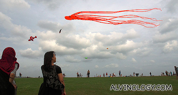 Kite Flying at Marina Barrage - Alvinology