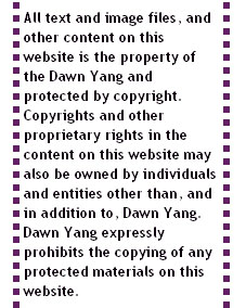 Dawn Yang and her copyrights