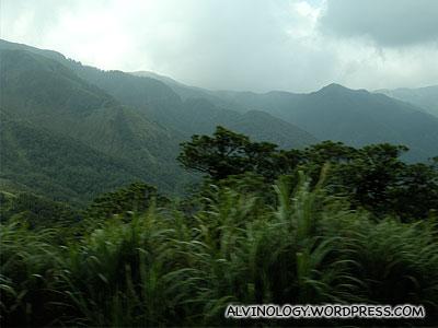Yangmingshan National Park (陽明山國家公園)