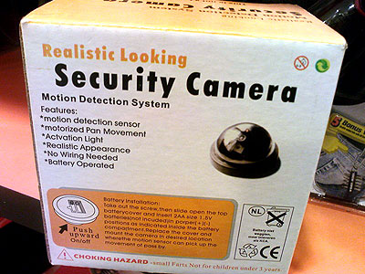 """Realistic Looking"" Security Camera"