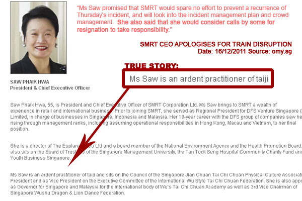 True Story: SMRT President & CEO Saw Phaik Hwa is an Ardent Practitioner of Taiji - Alvinology
