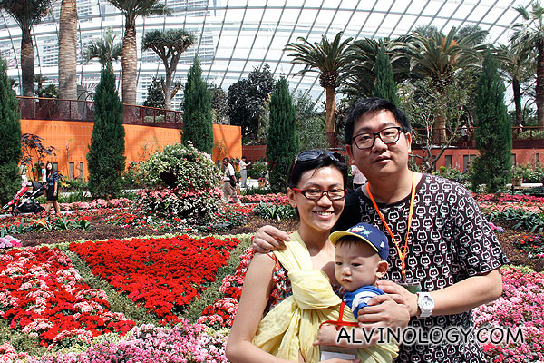 Gardens by the Bay - Flower Dome - Alvinology
