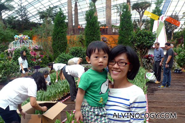 Tulipmania hits Gardens by the Bay - Alvinology