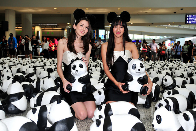 1,600 Pandas hit Hong Kong!