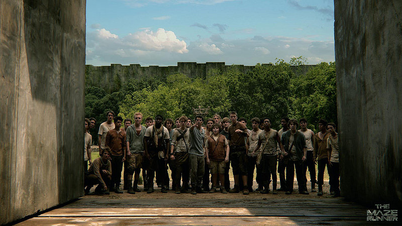 [Movie Review] The Maze Runner