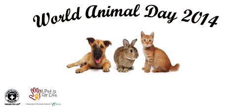 World Animal Day 2014 in Singapore