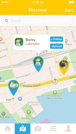 Social Networking for Animal Lovers - Alvinology