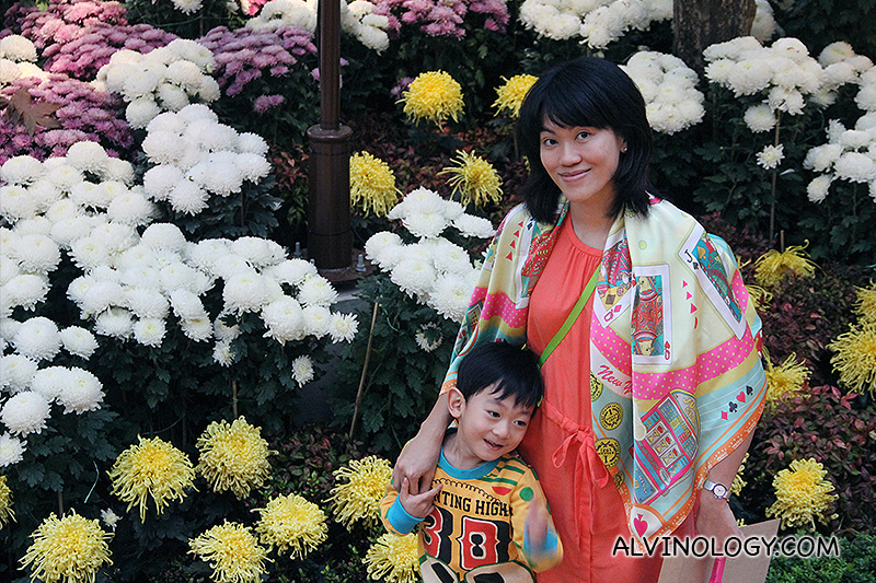 Celebration of Chrysanthemums at Gardens by the Bay - Alvinology