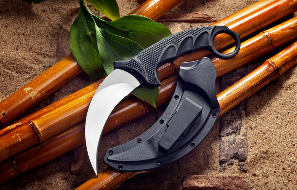 What is a karambit knife and why is it dangerous? Did Natalie Siow Yu Zhen and co-accused have a connection with the knife?