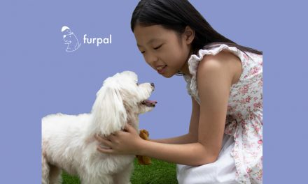 Love dogs but don't own one? You can borrow someone else's dog for the mean time at furpal