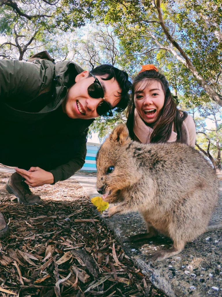 Go on a day excursion to Rottnest Island to catch a selfie with the friendly quokka.