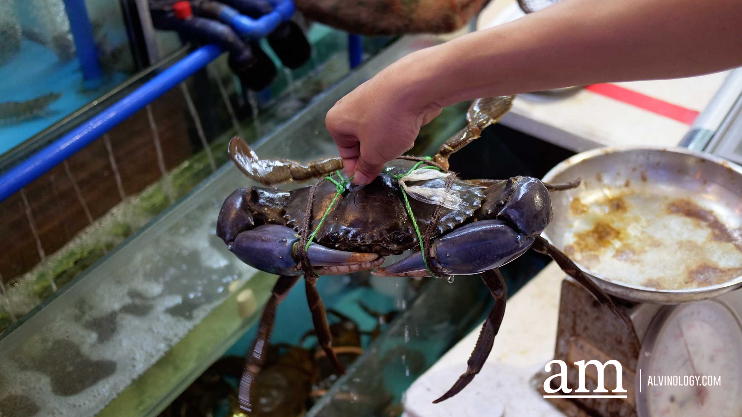 Tian Wei Seafood [Food Review] - value-for-money mala crab and other fresh seafood items - Alvinology