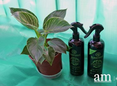 [#SupportLocal] Plantonic - Making horticulture and gardening safe and easy for everyone - Alvinology