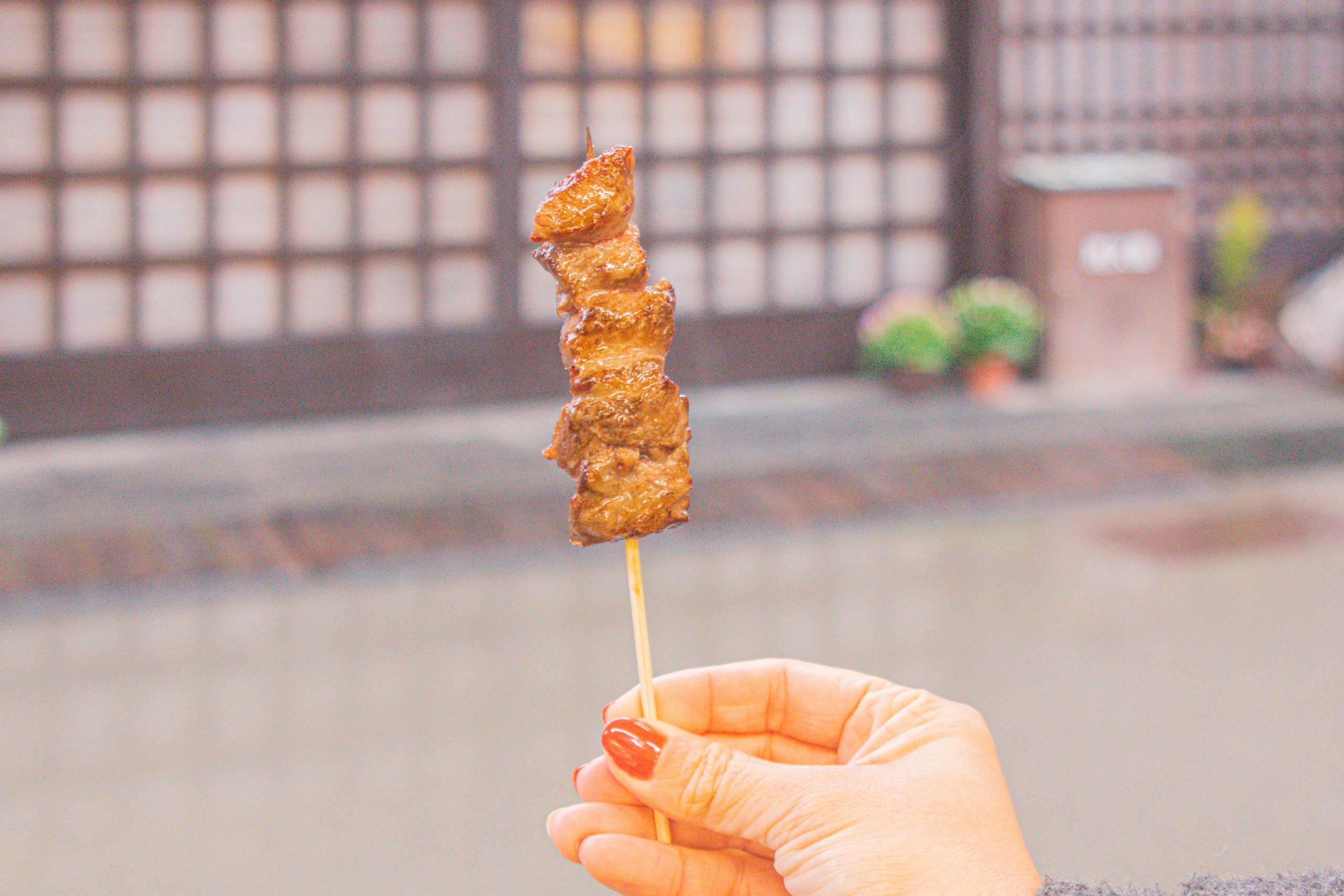 Delicious food, Beautiful Scenery: Explore Central Japan like a Local with the Takayama-Hokuriku Area Tourist Pass! [Part 1] - Alvinology