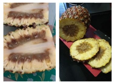 NTUC FairPrice removes Taiwanese pineapples after customer complaints of rotten core - Alvinology