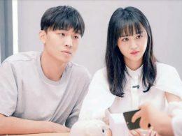 Zheng Shuang loses custody of two children born in US via surrogacy - Alvinology